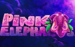 Играть в Pink Elephant